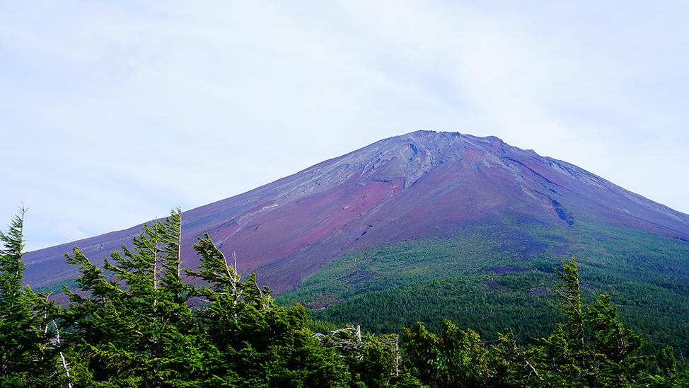 奥庭自然公園からの富士山