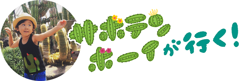 cactusboys