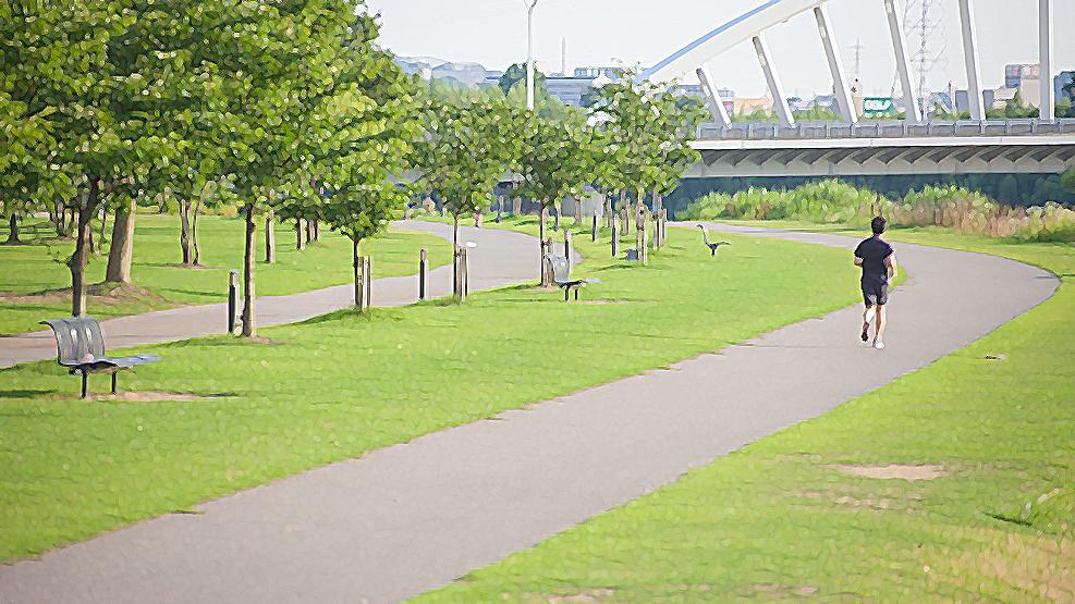 ジョギングなどの適度な運動